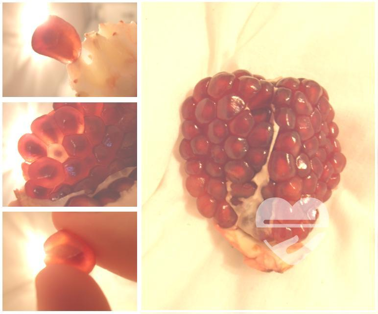 Seeds, flowers and a heart made with a pomegranate.